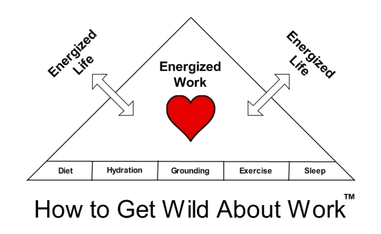 Wild About Work pyramid med